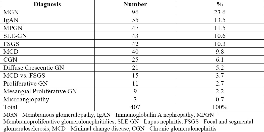 Table 1. The frequency of different glomerulonephritidies (GNs) in the 407 adult renal biopsies