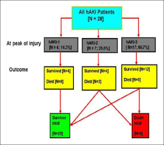Hospital acquired acute kidney injury in critically ill children and figure 4 flow chart showing the prevalence of each of the haki stages at the peak of injury and outcome in each of the stages ccuart Gallery