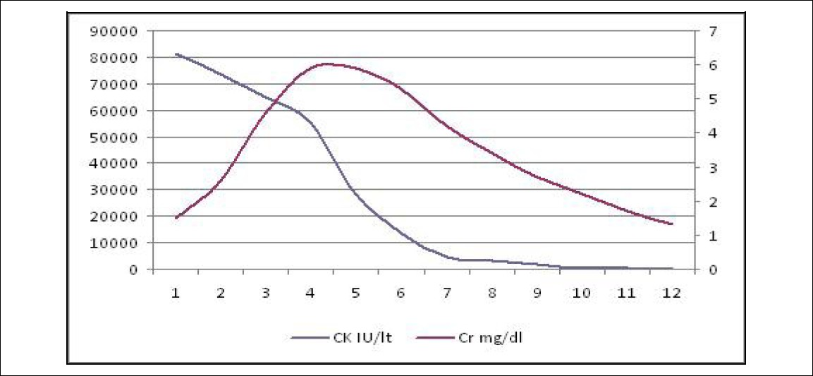 Figure 1: Creatinine and creatine kinase values progression during hospitalization.