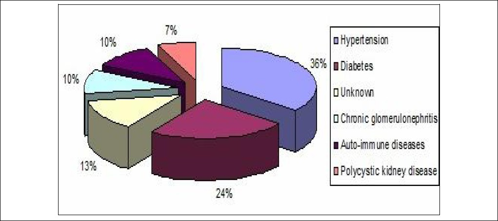 Figure 1: Causes of end-stage renal disease in the study patients