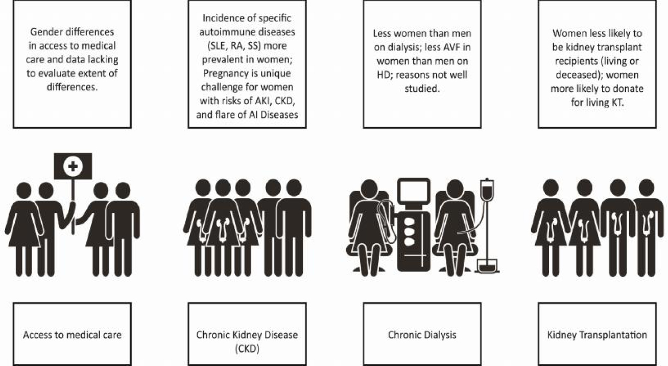 What We Do And Do Not Know About Women And Kidney Diseases Questions Unanswered And Answers Unquestioned Reflection On World Kidney Day And International Woman S Day Piccoli Gb Alrukhaimi M Liu Zh
