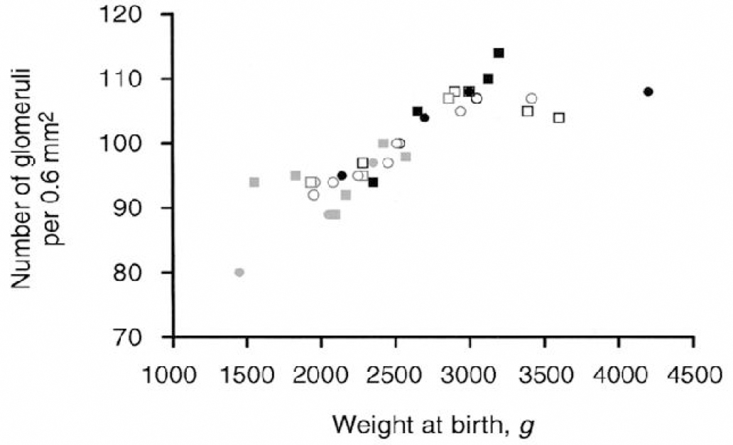 Figure 1: Relationship between the weight at birth and the number of glomeruli.