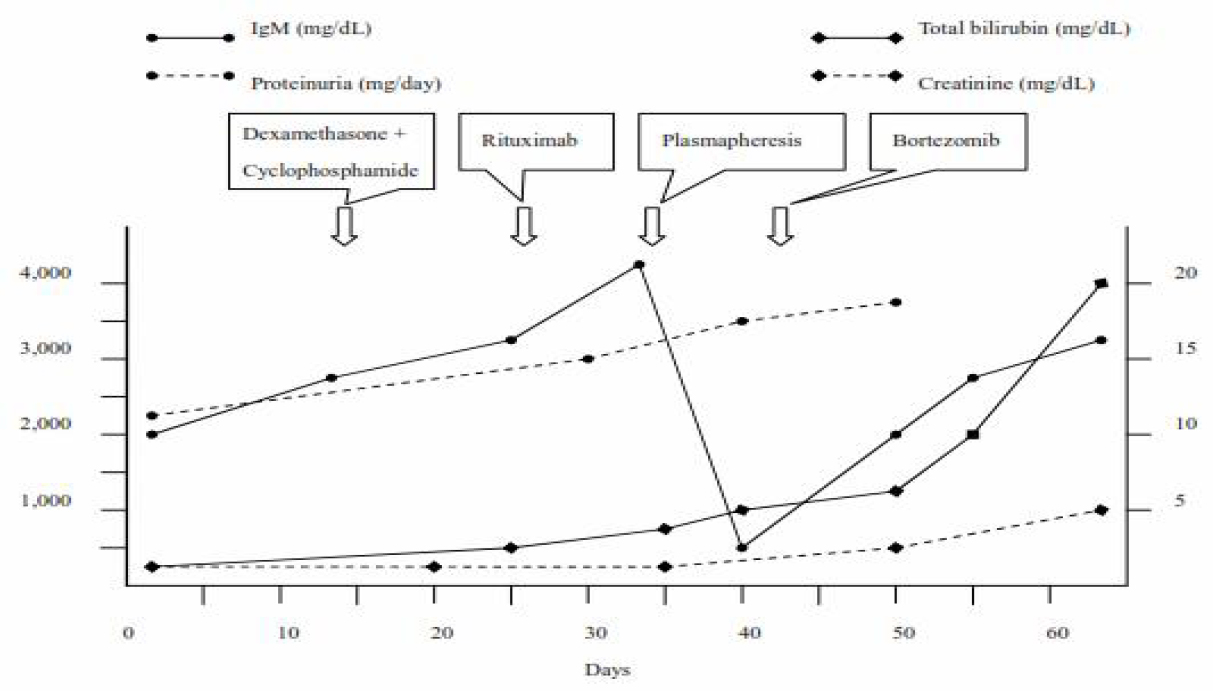 Figure 3: Summary of clinical course including treatment and changes of proteinuria, immunoglobulin M, creatinine, and total bilirubin levels over time.